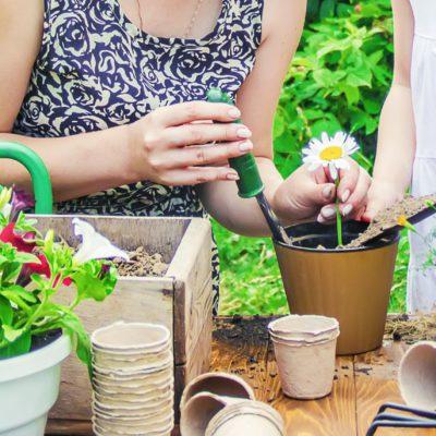 おうち時間がもっと楽しくなる!子どもでも簡単な家庭菜園の始め方